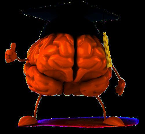 Gehirn_doktorhut_trans